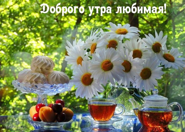 Доброго утра любимая!
