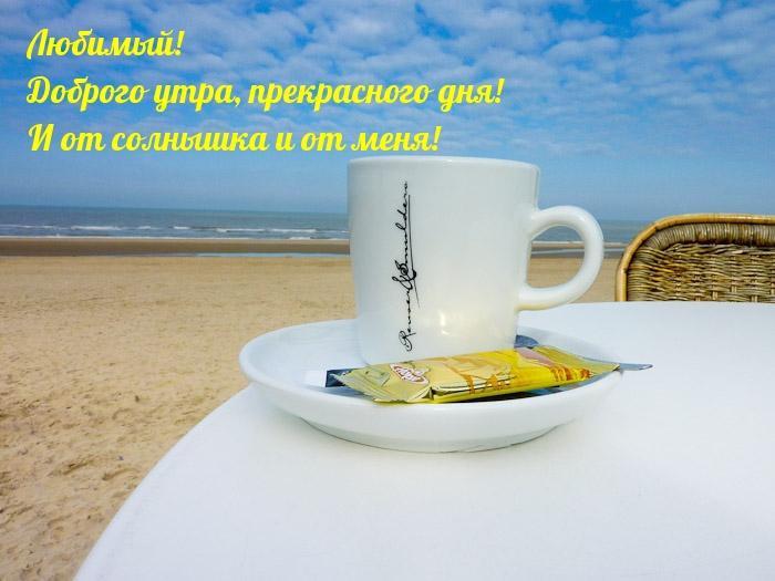 Любимый! Доброго утра, прекрасного дня!