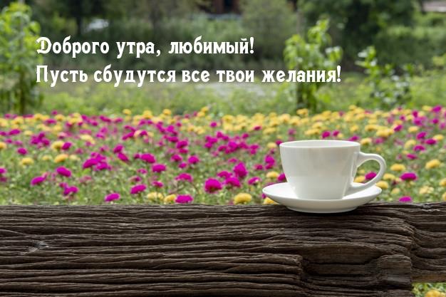 Доброго утра, любимый! Пусть сбудутся все твои желания!