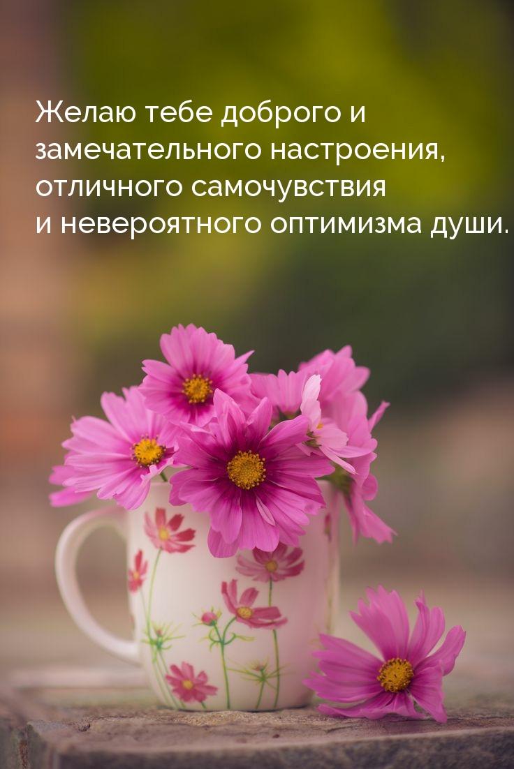 Желаю тебе доброго и замечательного настроения
