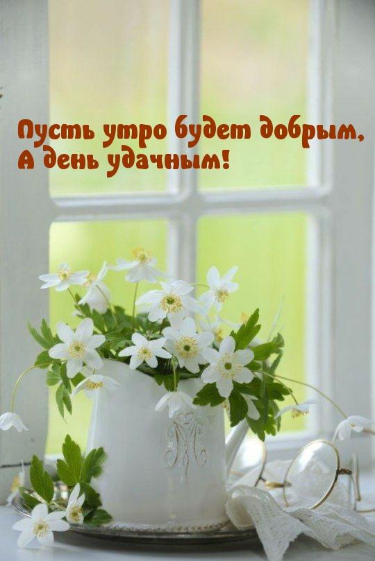 Пусть утро будет добрым, А день удачным!
